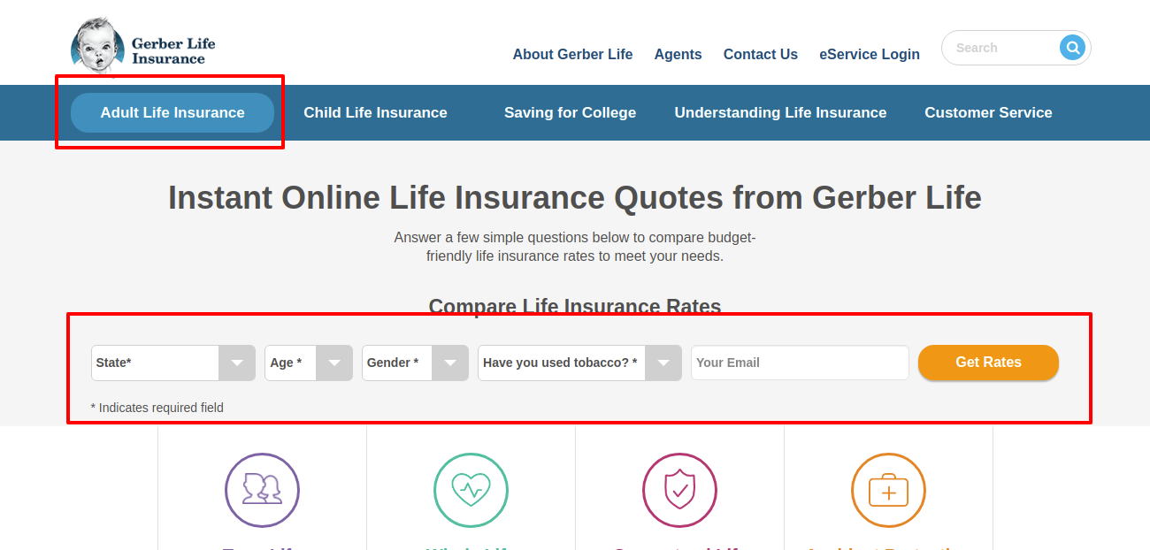Life Insurance Quotes Online for Adults